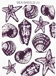 SEA SHELLS 1 STATIC MOUNTED RUBBER STAMP
