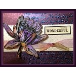 WATERLILY (1) CLING MOUNT RUBBER STAMP AND MATCHING DIE COMBO